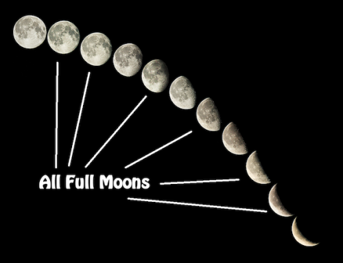 Full Moon HHH Run #113: The Waning Moon Hash