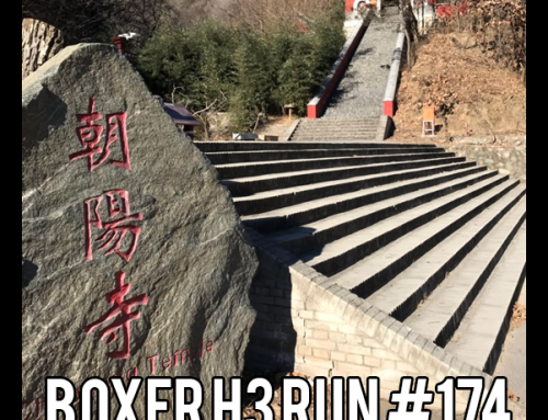 Boxer hash 174: First Challenge Run in 2019