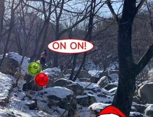 Boxer H3 Run #185: Jingle Balls all the Mountain Way!
