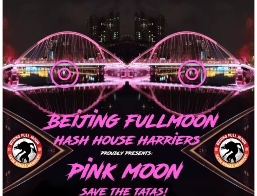Full Moon Hash #163: Pink Moon – Save the Tatas!